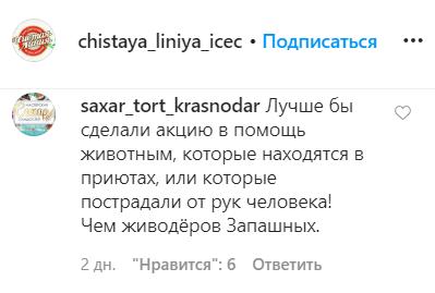 Рекламу мороженого «Чистая линия» раскритиковали в соцсетях из-за участия братьев Запашных