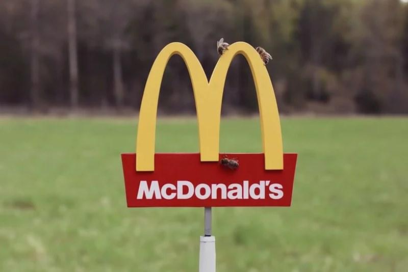 McDonald's открыл маленький ресторан для пчел