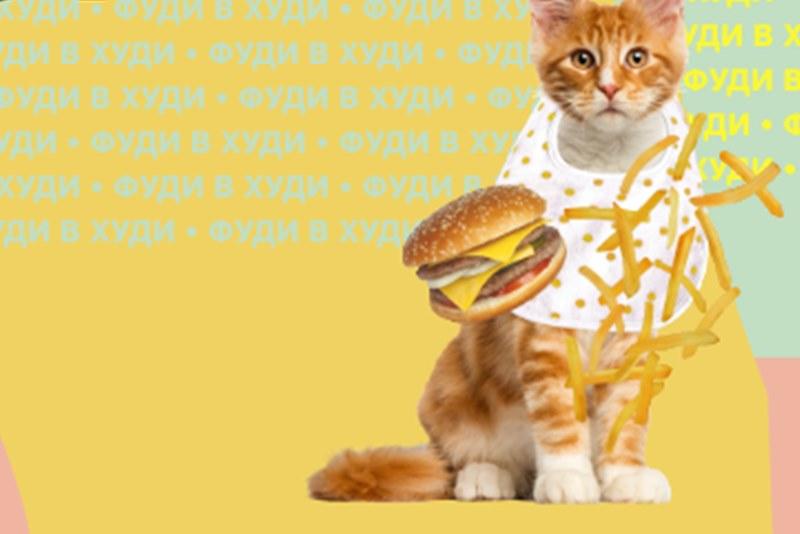 «Тинькофф» запустил тест с котиками к фестивалю «Пикник Афиши»