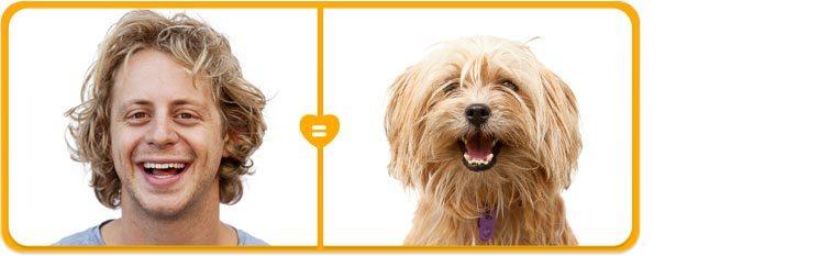 Опыт продвижения ветеринарных брендов за рубежом